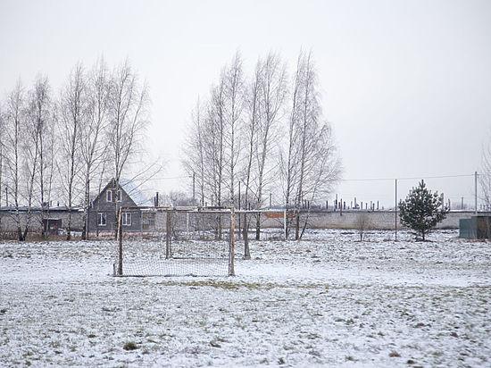 Как родные: в деревне Псковского района появится комплекс искусственных полей