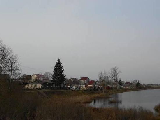 Апрельские сотки: садоводы Псковской области выходят на митинг